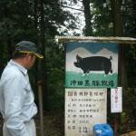 沖田黒豚牧場 訪問記