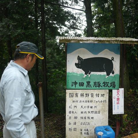 沖田黒豚牧場看板